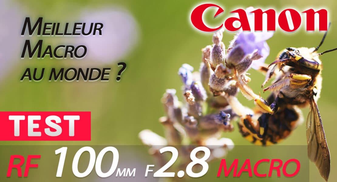test Canon RF 100 MACRO